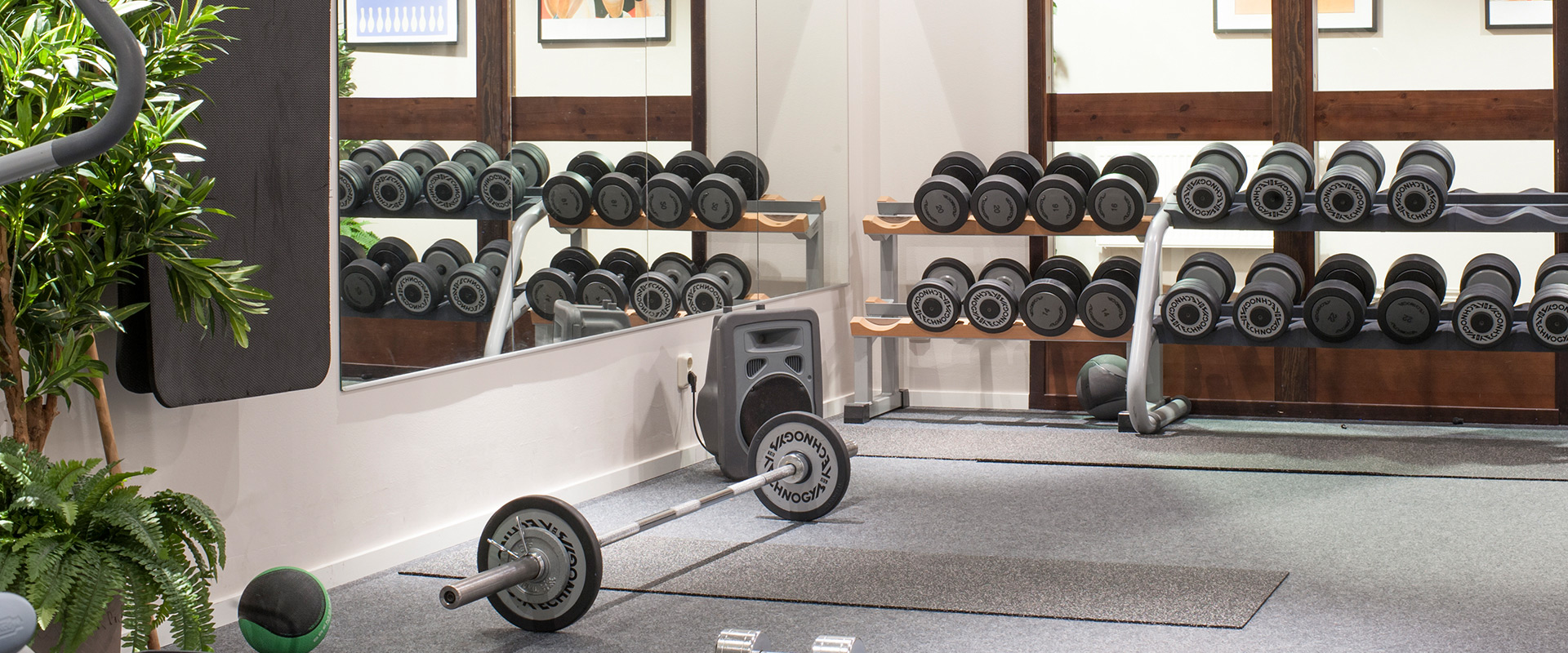 Bildresultat för gym